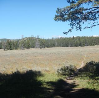 Pelican Valley Trailhead Yellowstone.JPG