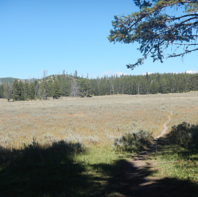 Pelican Valley Trailhead Yellowstone.JPG
