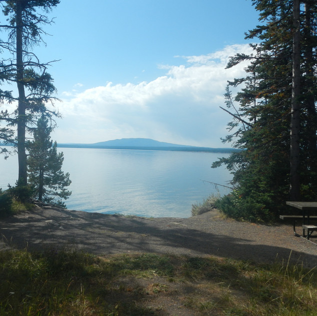 Spruce-Fir Exhibit Picnic Area Lake View