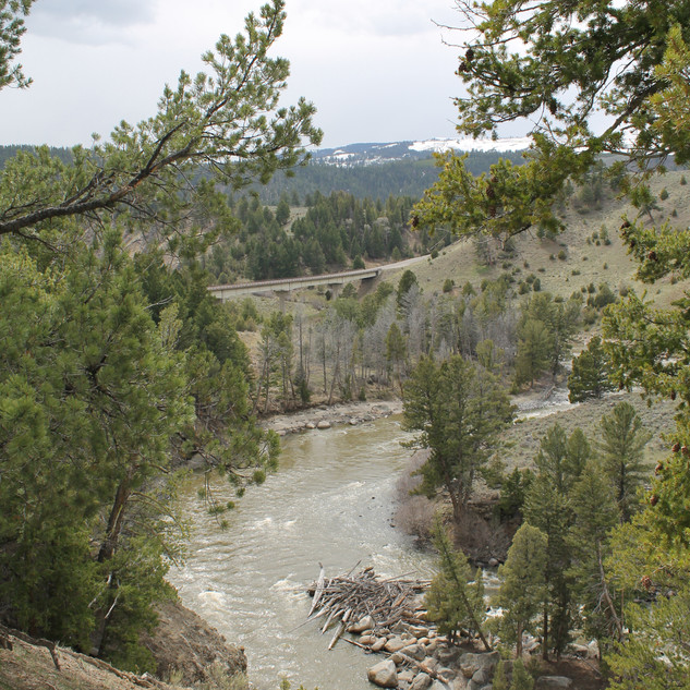 Bridge Over Yellowstone River.JPG
