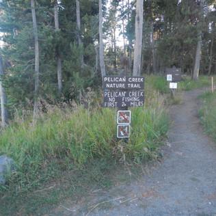Pelican Valley Creek Trailhead.JPG
