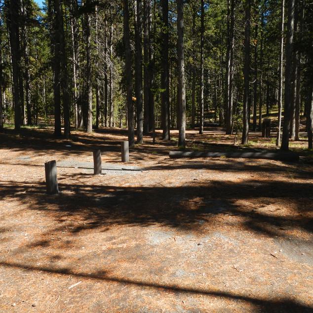 East Divide Picnic Area Parking.JPG