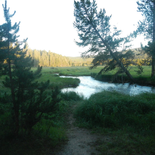 Norris Picnic Area and the Gibbon River.