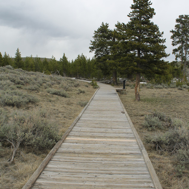 Self Guiding Trail YNP.JPG