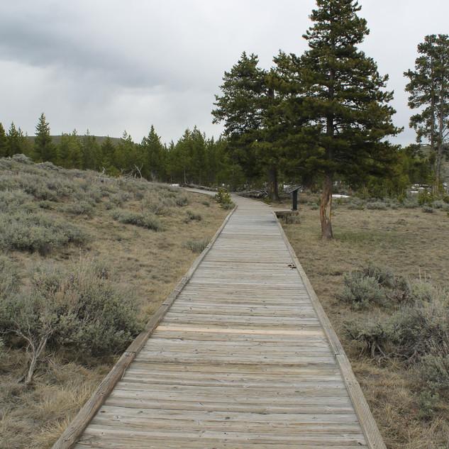Self Guiding Trail YNP.JPG