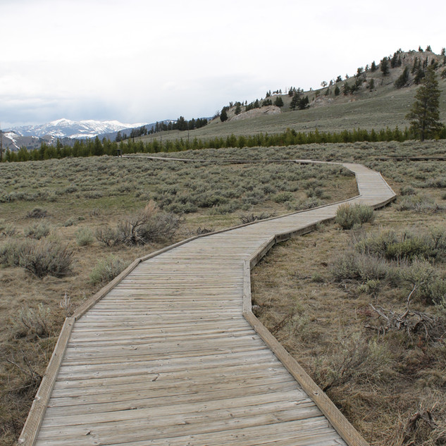 Self Guiding Trail Yellowstone.JPG