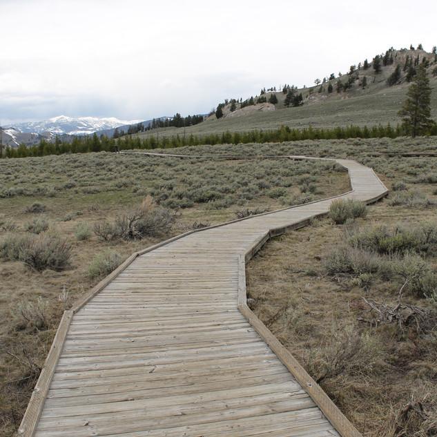 Self Guiding Trail Yellowstone.JPG