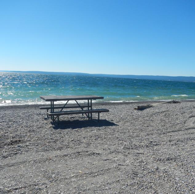 Sedge Bay Picnic Area.JPG