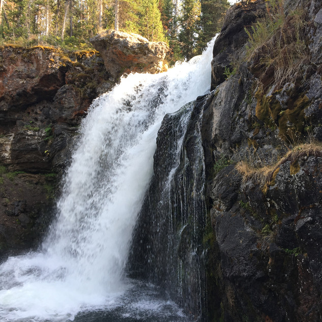 Yellowstone Moose Falls.JPG