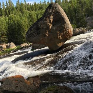 Duck Rock Close Up.JPG