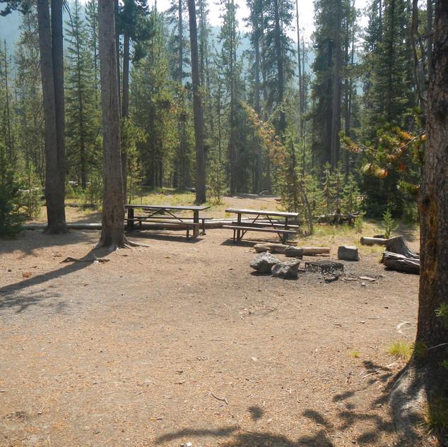 Spring Creek Picnic Area.JPG