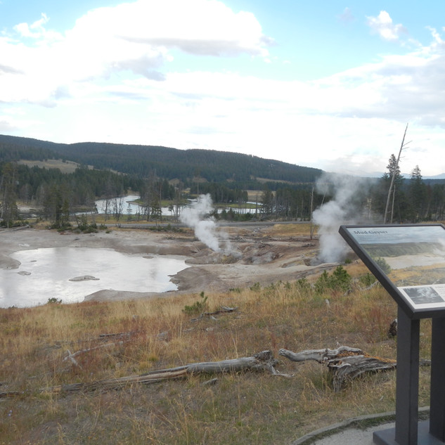 Yellowstone Mud Volcano Area.JPG