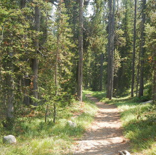 Yellowstone Divide Trailhead.JPG