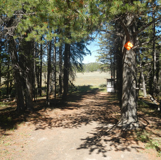 Pelican Valley Trailhead.JPG
