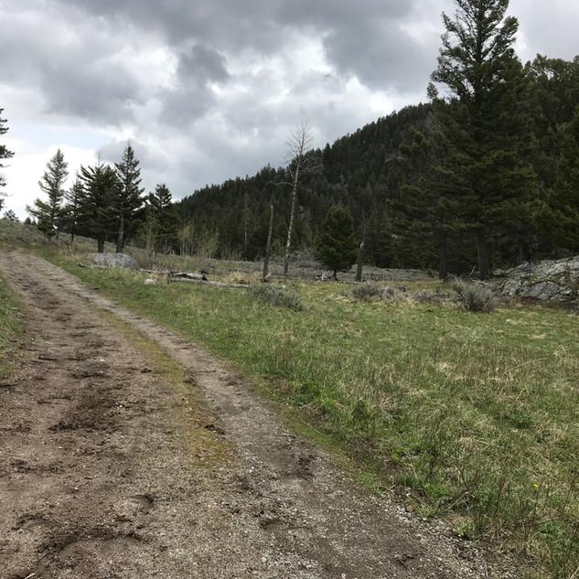 Slough Creek  Trailhead.JPG