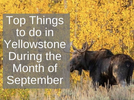 Top Things to do in Yellowstone National Park During the Month of September