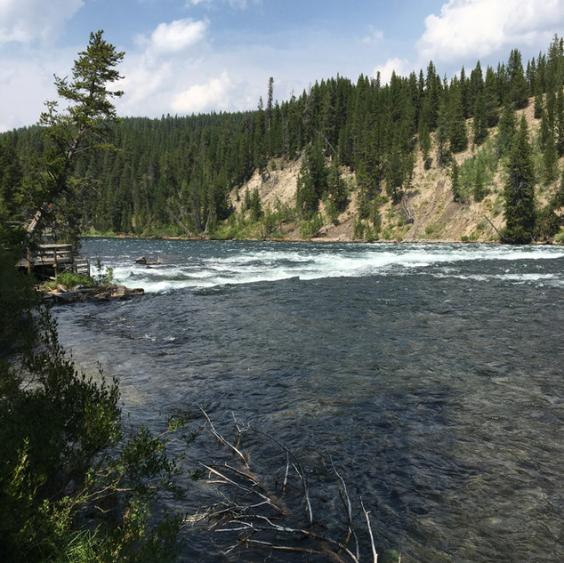 LeHardy Rapids Yellowstone River.JPG
