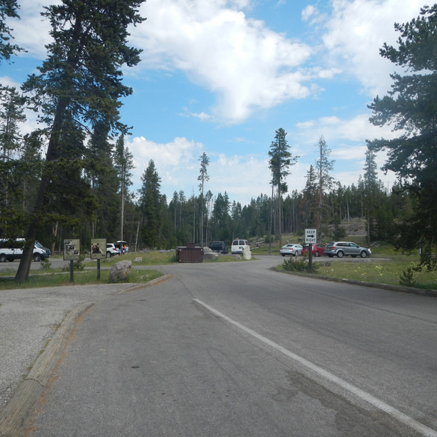 Yellowstone Nez Perce Picnic Area.JPG