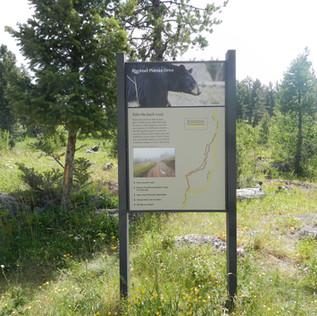 Blacktail Plateau Drive.JPG