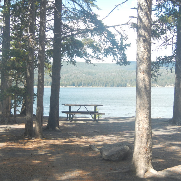 Gull Point Drive Picnic Area View.JPG