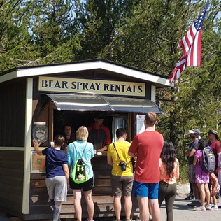 Bear Aware - Bear Spray Rental Yellowsto
