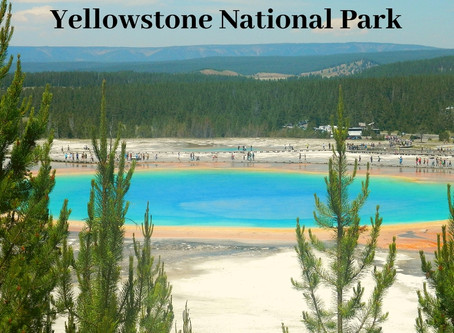 Planning a Perfect Day in Yellowstone National Park