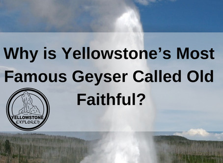 Why is Yellowstone's Most Famous Geyser Called Old Faithful?