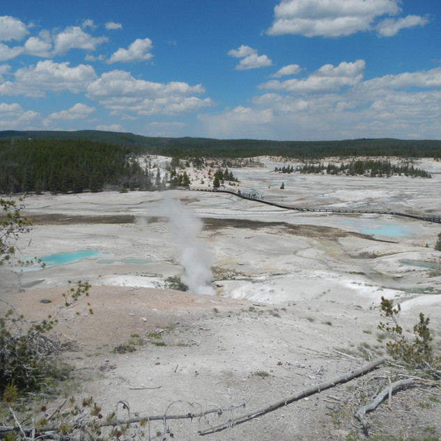 Norris Geyser Basin Over view.JPG