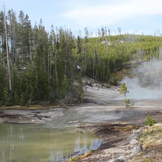 Frying Pan Springs Overview.JPG