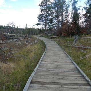 Mud Volcano Area Path.JPG