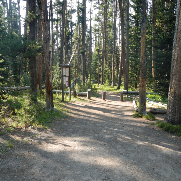 Cascade Picnic Area Trail.JPG