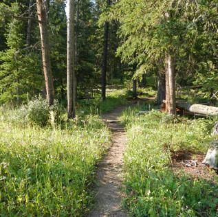 Warm Creek Trailhead.JPG