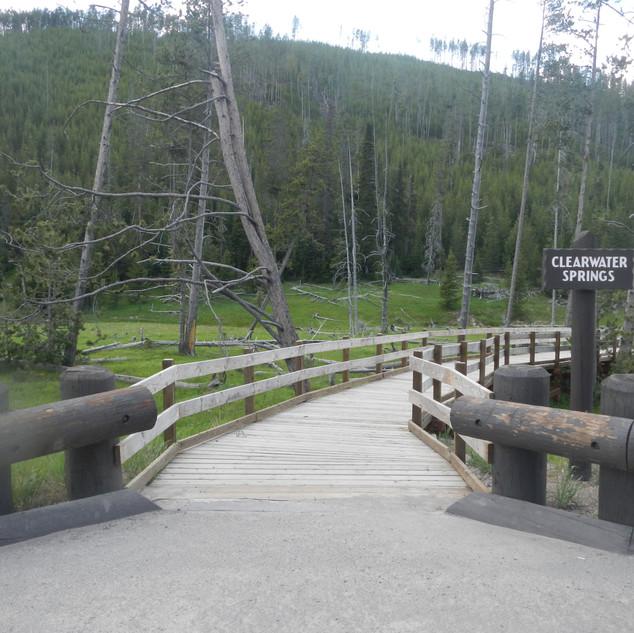 Clearwater Springs Entry.JPG