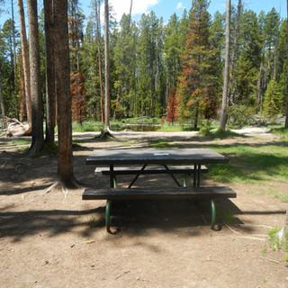 Gibbon Meadows Picnic Area.JPG