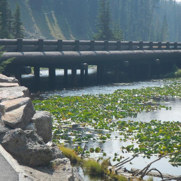 Isa Lake Yellowstone.JPG