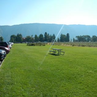 Mammoth Grass.JPG