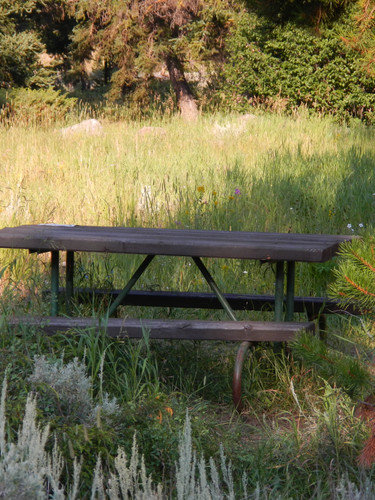 Pebble Creek Campground Picnic Table.JPG