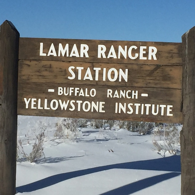 Lamar River Buffalo Ranch Sign.jpg