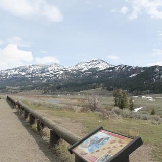 Lamar River Trailhead View.JPG