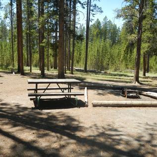 Yellowstone Wisky Flate Picnic Area.JPG