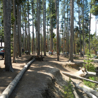 Gibbon Meadows Picnic Area Yellowstone.J