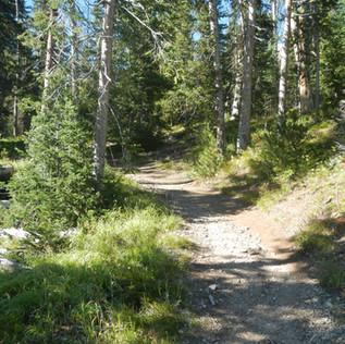 Eladanor Lake and Avalanche Peak Trail.J