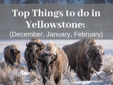 Top Things to do in Yellowstone During the Winter Months of December, January & February