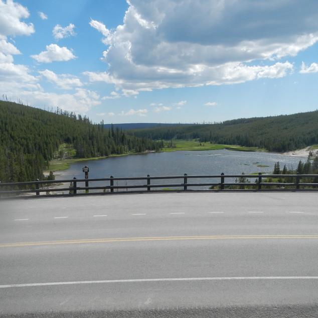 Nymph Lake Overlook Yellowstone National