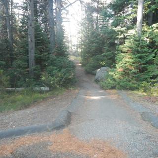 Anglers Bluff Picnic Area Trail.JPG