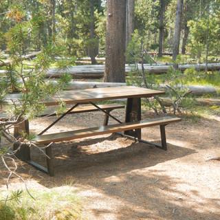 De Lacy Creek Picnic Area Yellowstone.JP