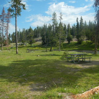 Nez Perce Picnic Area Grass tables and r