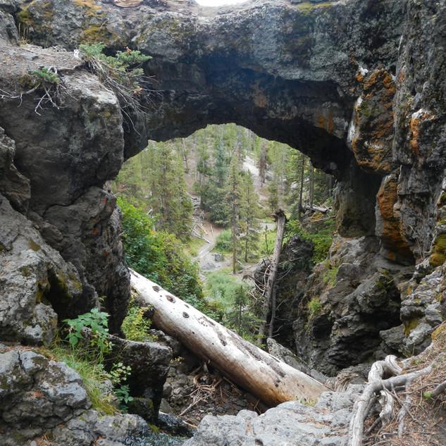 Natural Bridge Upclose.JPG