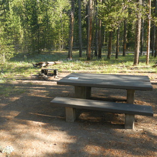 Madison Picnic Area.JPG