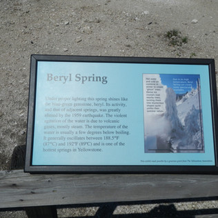 Beryl Spring in YNP.JPG